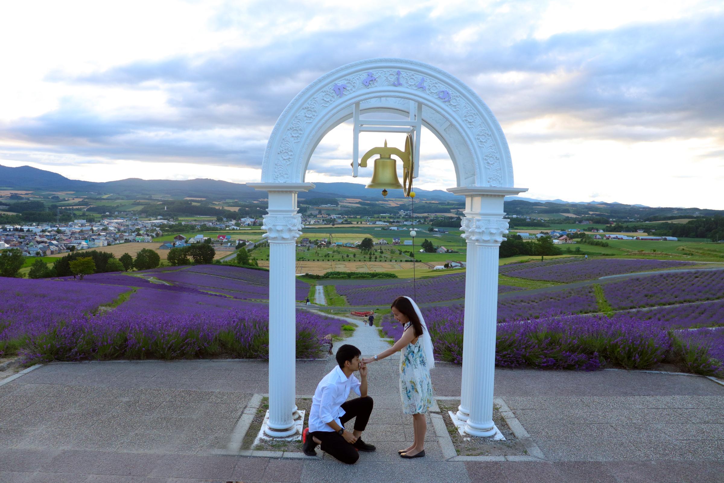 日本北海道富良野求婚