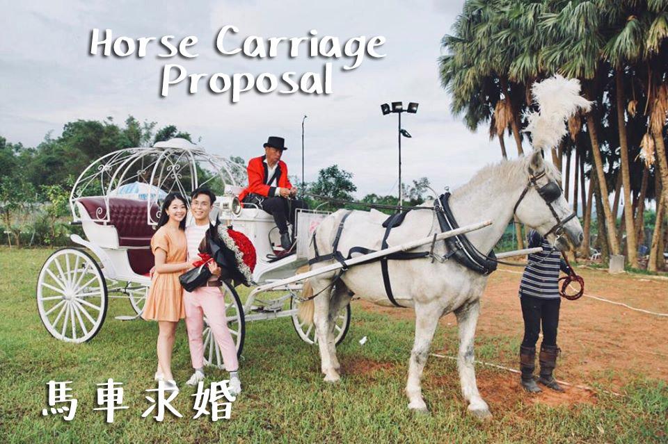 香港史上最浪漫馬車求婚