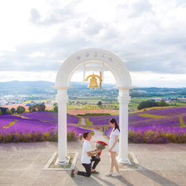 北海道求婚